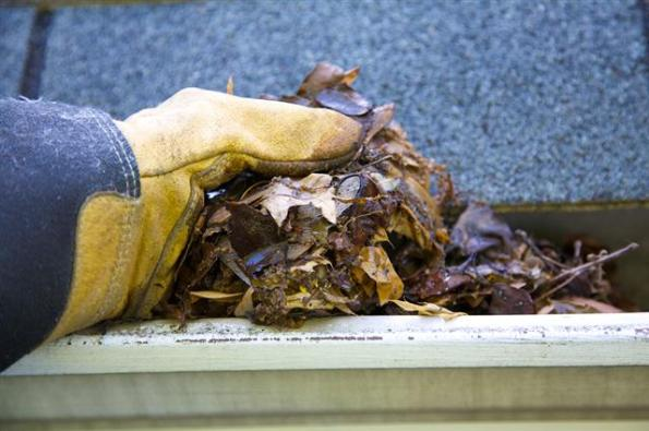Gutter Cleaning Time Again Protec Building Services