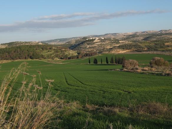 green israel